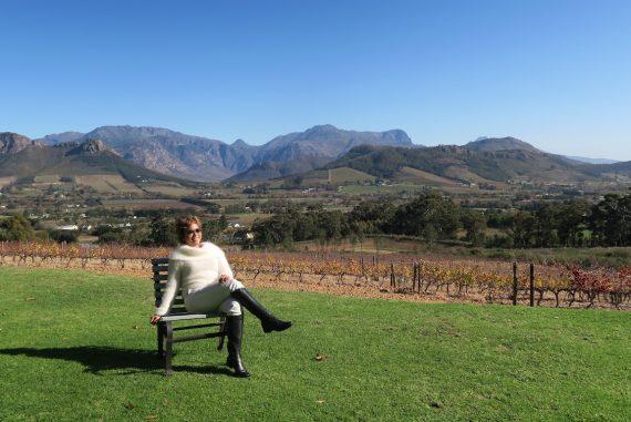 Vineyard in Cape Town